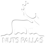 NUTS Pallas 2016 bussikyyti huoltajalle